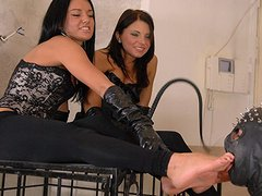 Young sexy girlfriends are keeping their slave in cage and humiliating on him